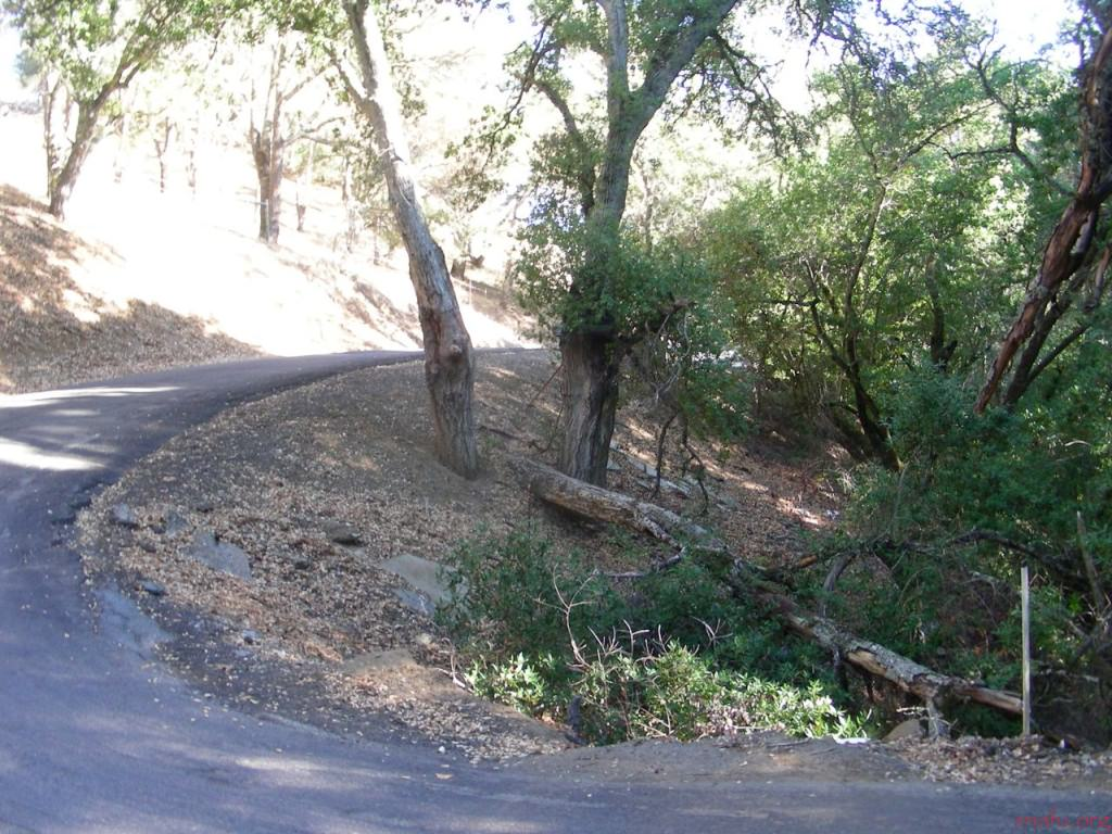 Marsh Creek Lane Suzuki
